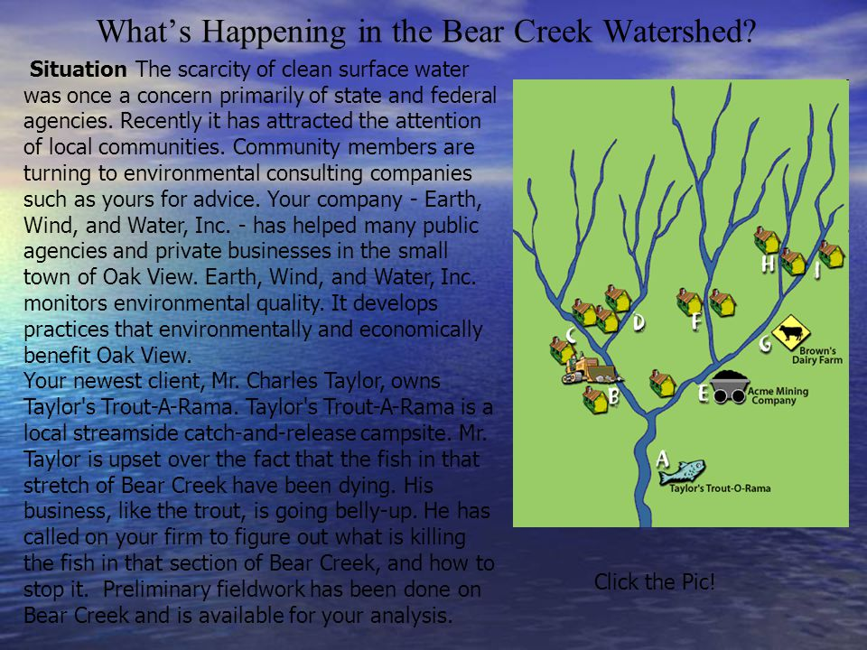 What's Happening in the Bear Creek Watershed