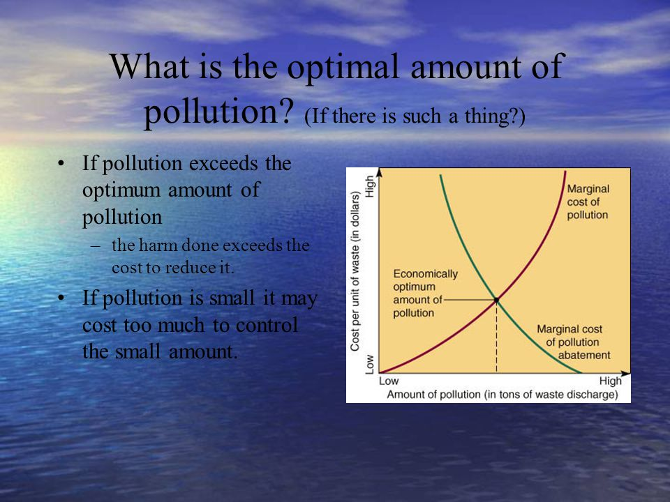 What is the optimal amount of pollution (If there is such a thing )