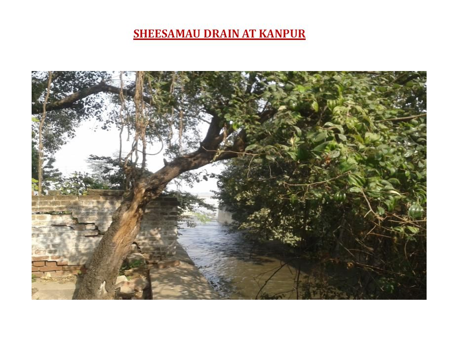 SHEESAMAU DRAIN AT KANPUR