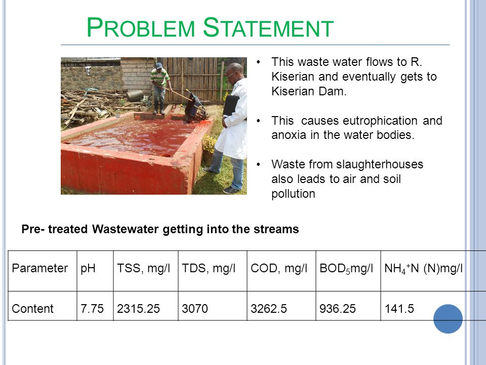 Problem Statement This waste water flows to R. Kiserian and eventually gets to Kiserian Dam.