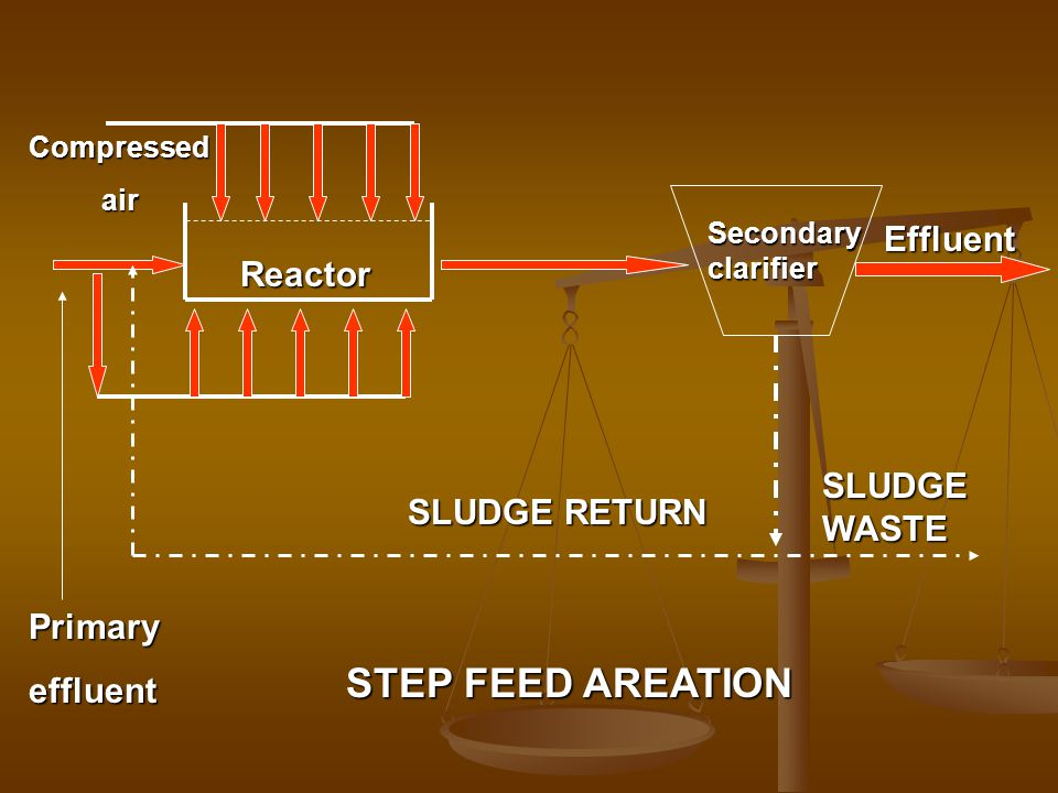 STEP FEED AREATION Effluent Reactor SLUDGE WASTE SLUDGE RETURN Primary