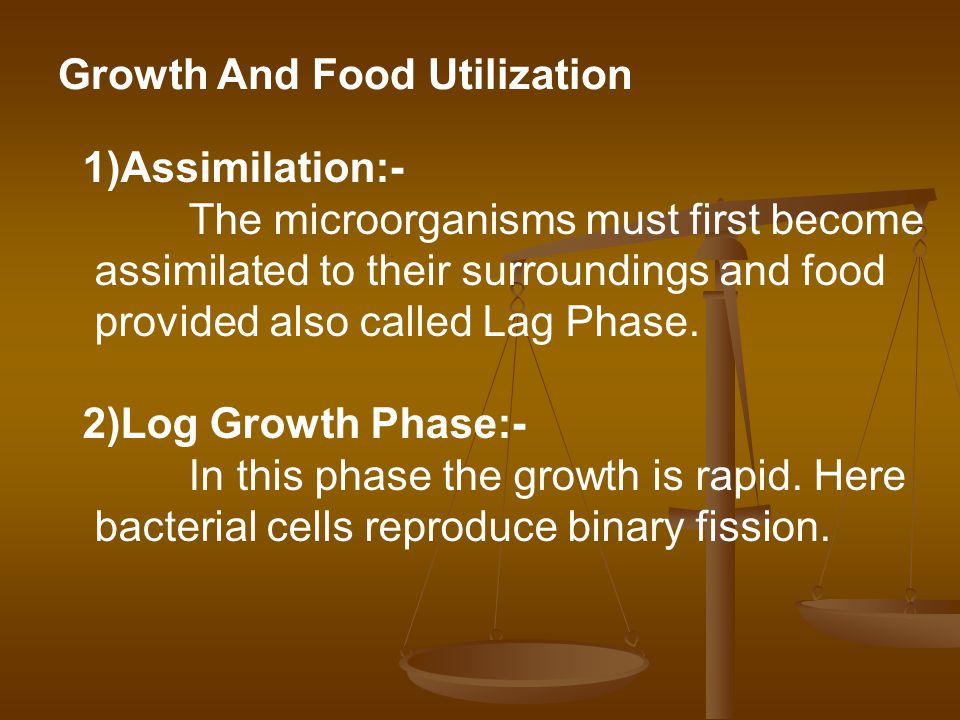 Growth And Food Utilization