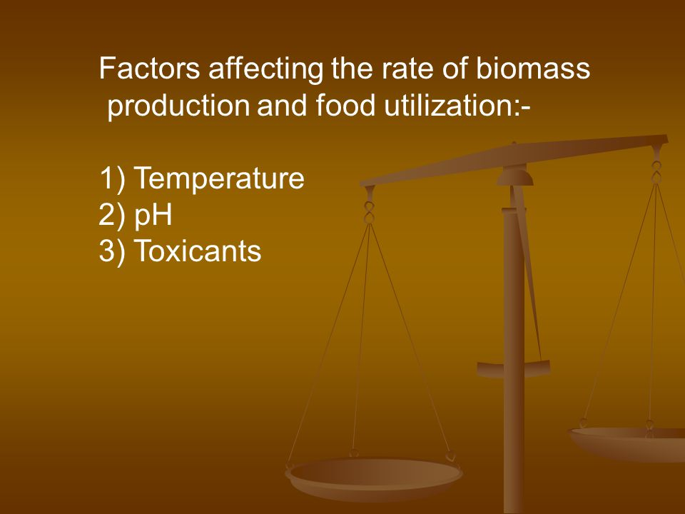 Factors affecting the rate of biomass