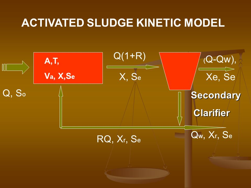 ACTIVATED SLUDGE KINETIC MODEL
