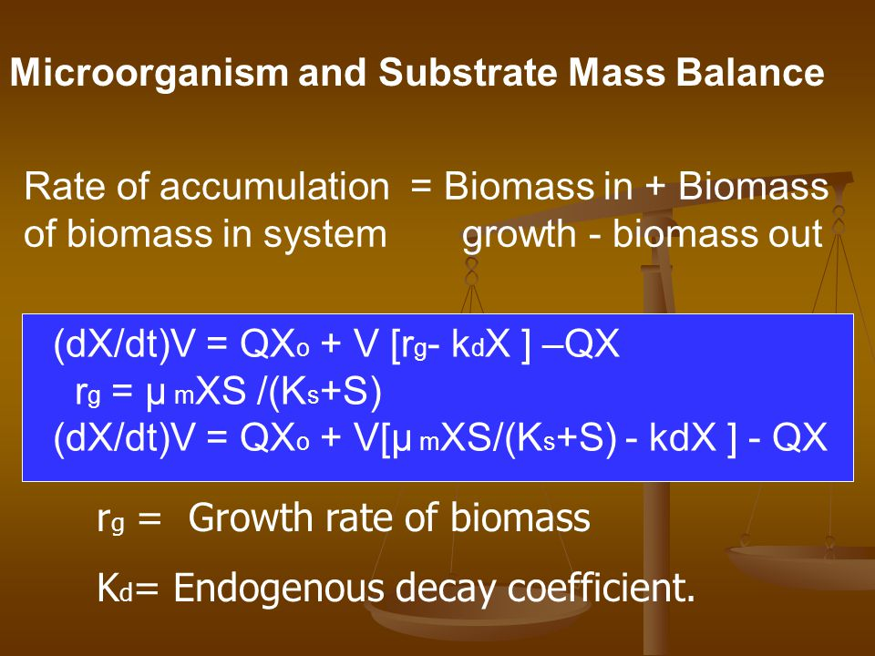 Microorganism and Substrate Mass Balance