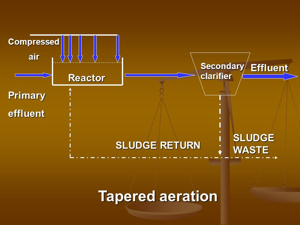 Tapered aeration Effluent Reactor Primary effluent SLUDGE WASTE