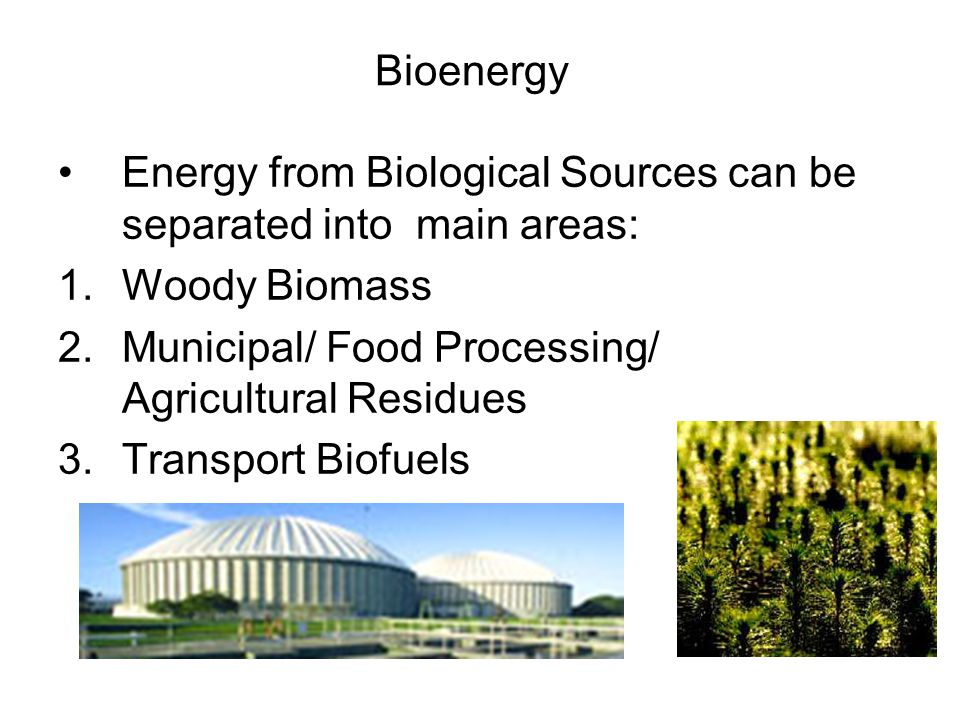 Bioenergy Energy from Biological Sources can be separated into main areas: Woody Biomass. Municipal/ Food Processing/ Agricultural Residues.