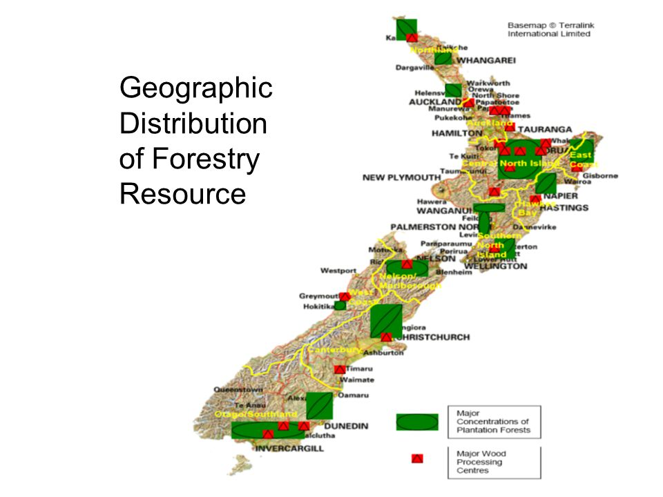 Geographic Distribution of Forestry Resource
