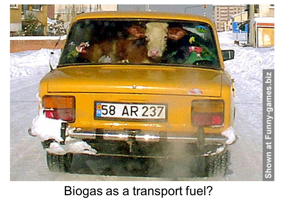 Biogas as a transport fuel