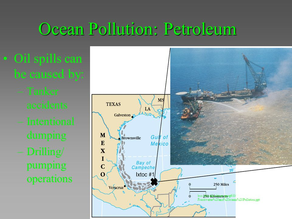 Ocean Pollution: Petroleum