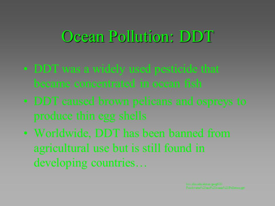 Ocean Pollution: DDT DDT was a widely used pesticide that became concentrated in ocean fish.