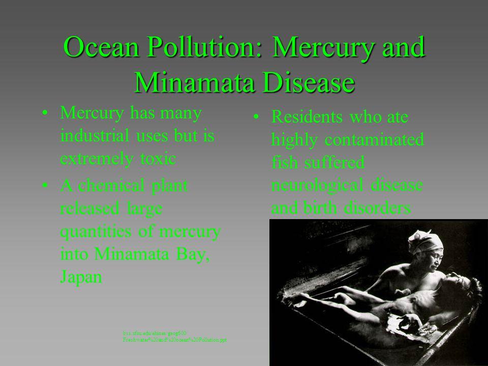 Ocean Pollution: Mercury and Minamata Disease