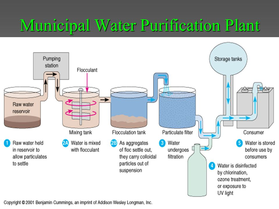Municipal Water Purification Plant