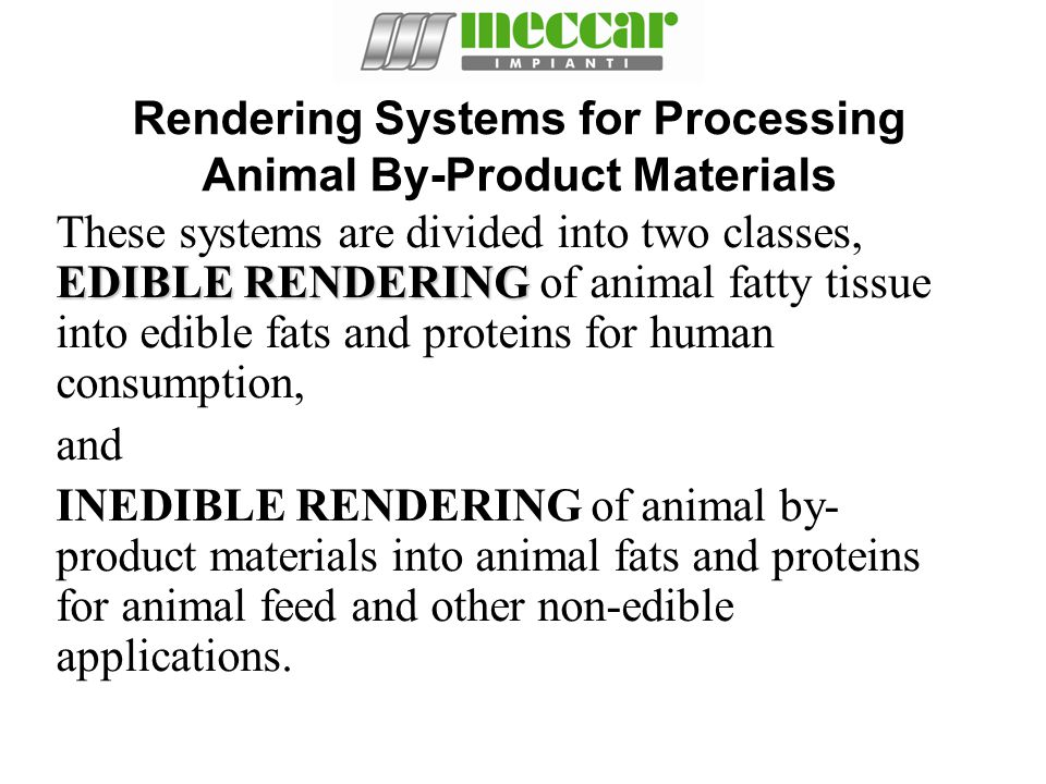 Rendering Systems for Processing Animal By-Product Materials