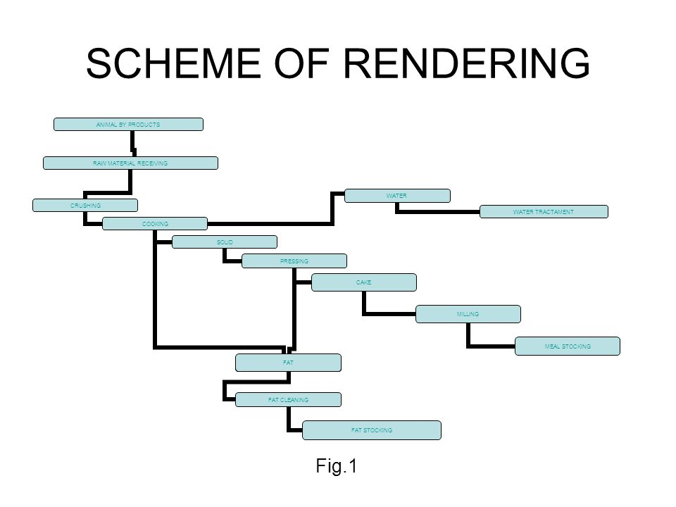 SCHEME OF RENDERING Fig.1