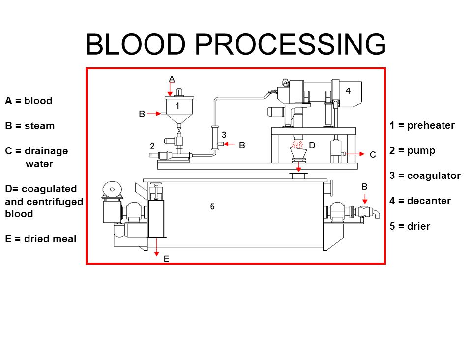 BLOOD PROCESSING A = blood B = steam C = drainage 1 = preheater water