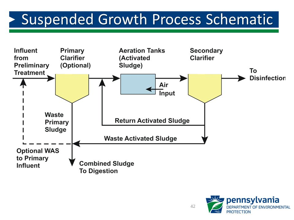 Suspended Growth Process Schematic