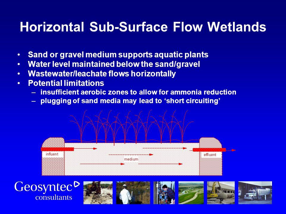 Horizontal Sub-Surface Flow Wetlands