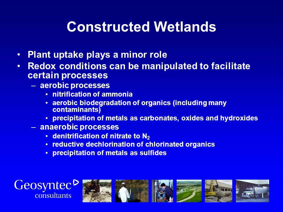 Constructed Wetlands Plant uptake plays a minor role