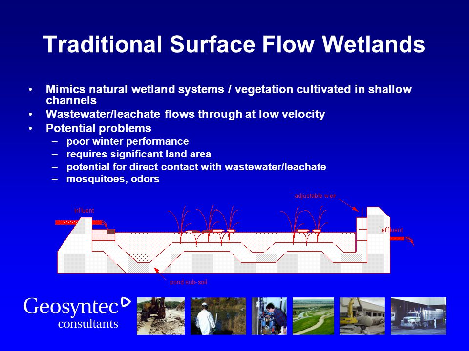 Traditional Surface Flow Wetlands