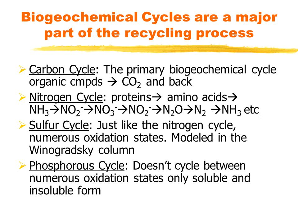 Biogeochemical Cycles are a major part of the recycling process