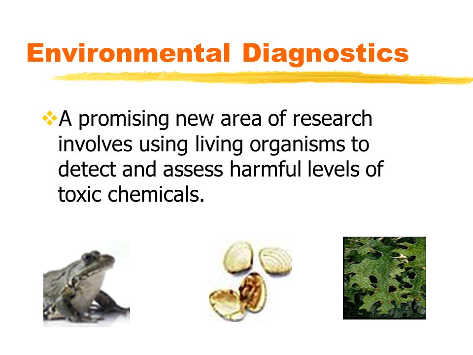 Environmental Diagnostics