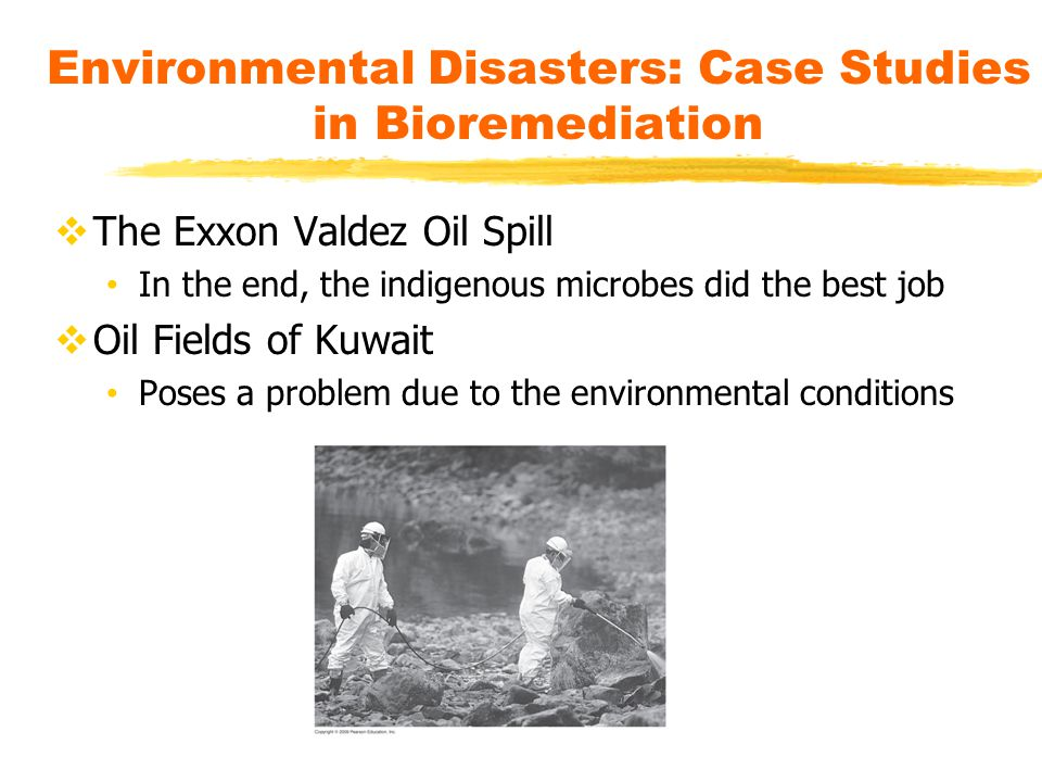 Environmental Disasters: Case Studies in Bioremediation