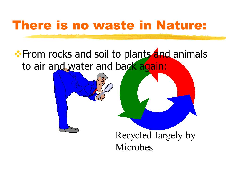 There is no waste in Nature: