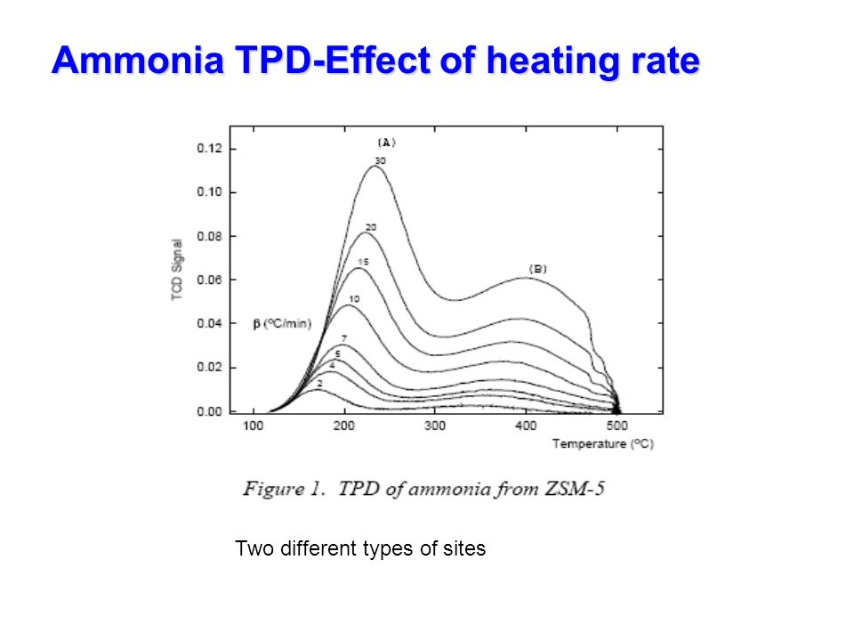 Ammonia TPD-Effect of heating rate