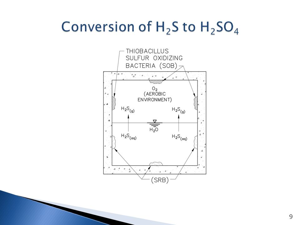 Conversion of H2S to H2SO4