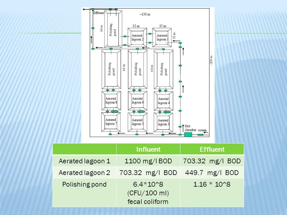 6.4*10^8 (CFU/100 ml) fecal coliform