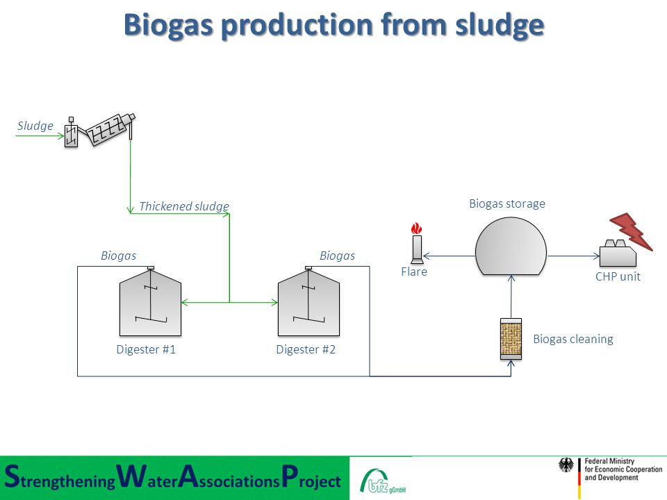 Biogas production from sludge