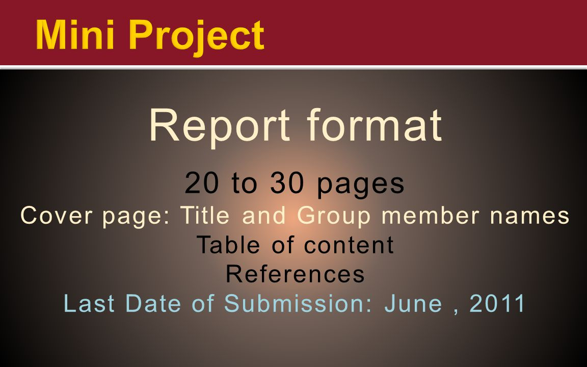 Report format Mini Project 20 to 30 pages