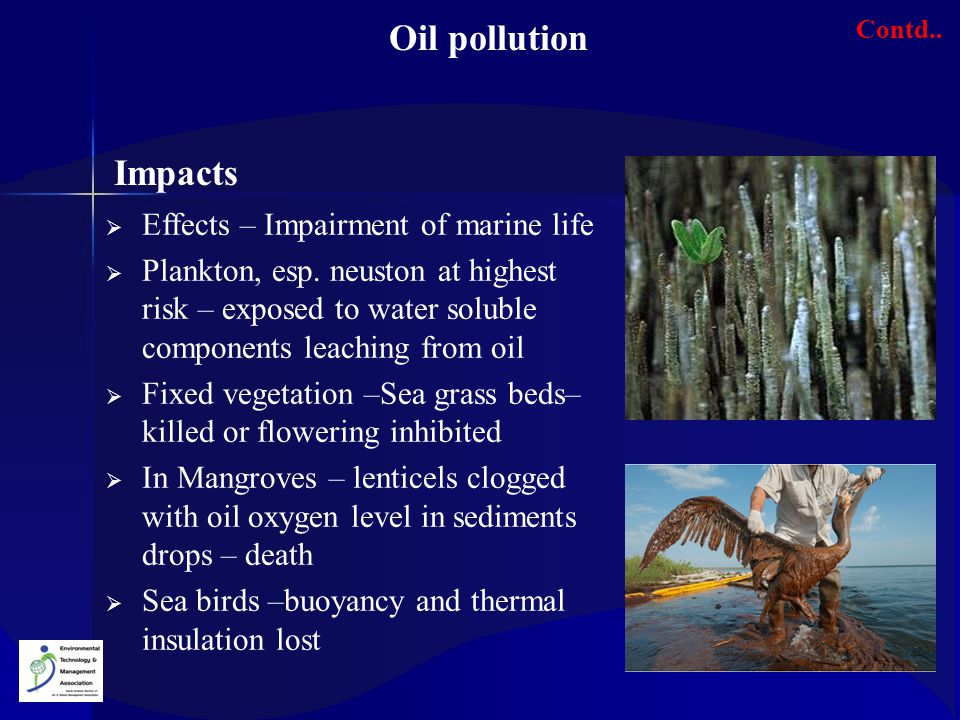 Oil pollution Impacts Effects – Impairment of marine life