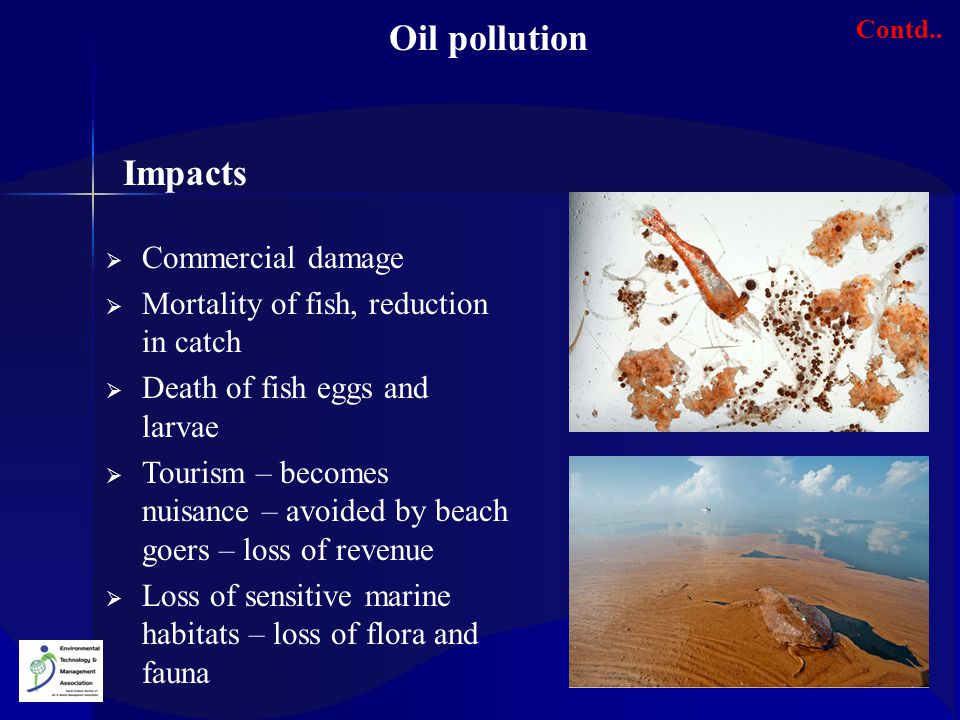 Oil pollution Impacts Commercial damage