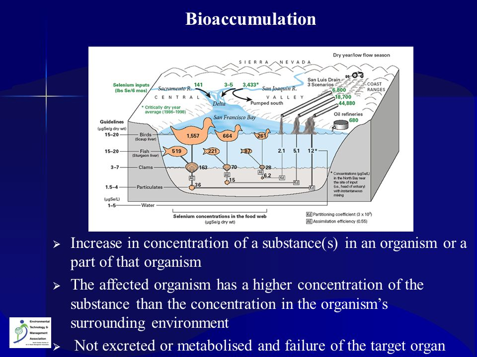 Bioaccumulation Increase in concentration of a substance(s) in an organism or a part of that organism.