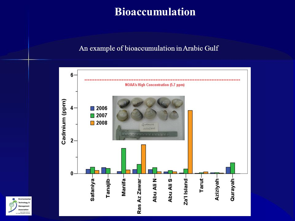 An example of bioaccumulation in Arabic Gulf