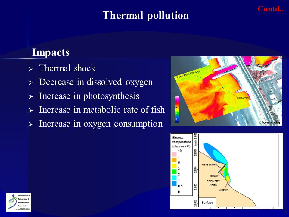 Thermal pollution Impacts Thermal shock Decrease in dissolved oxygen
