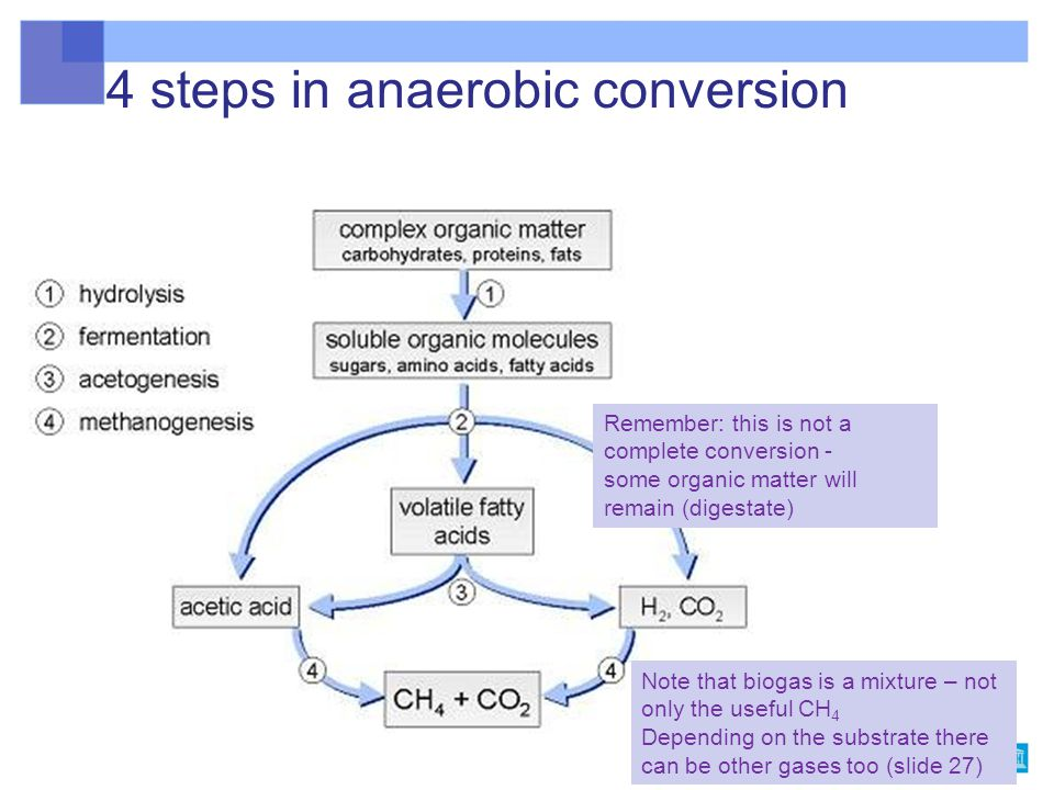 4 steps in anaerobic conversion