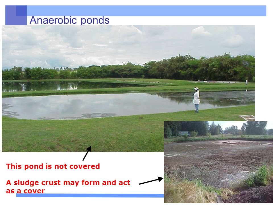 Anaerobic ponds This pond is not covered