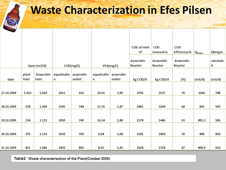 Waste Characterization in Efes Pilsen