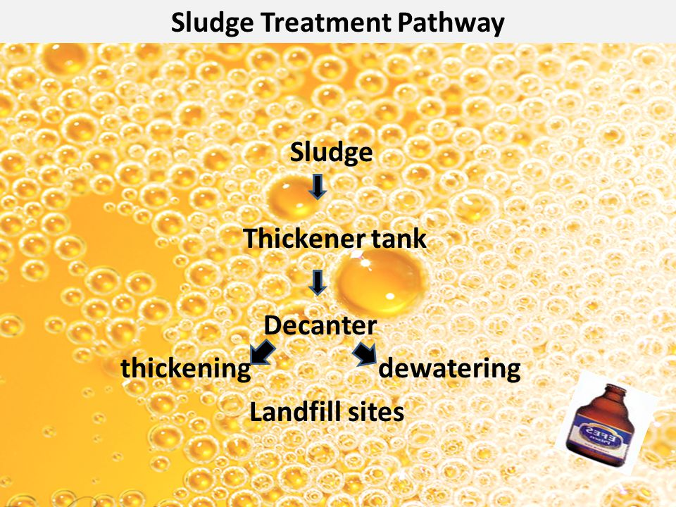 Sludge Treatment Pathway