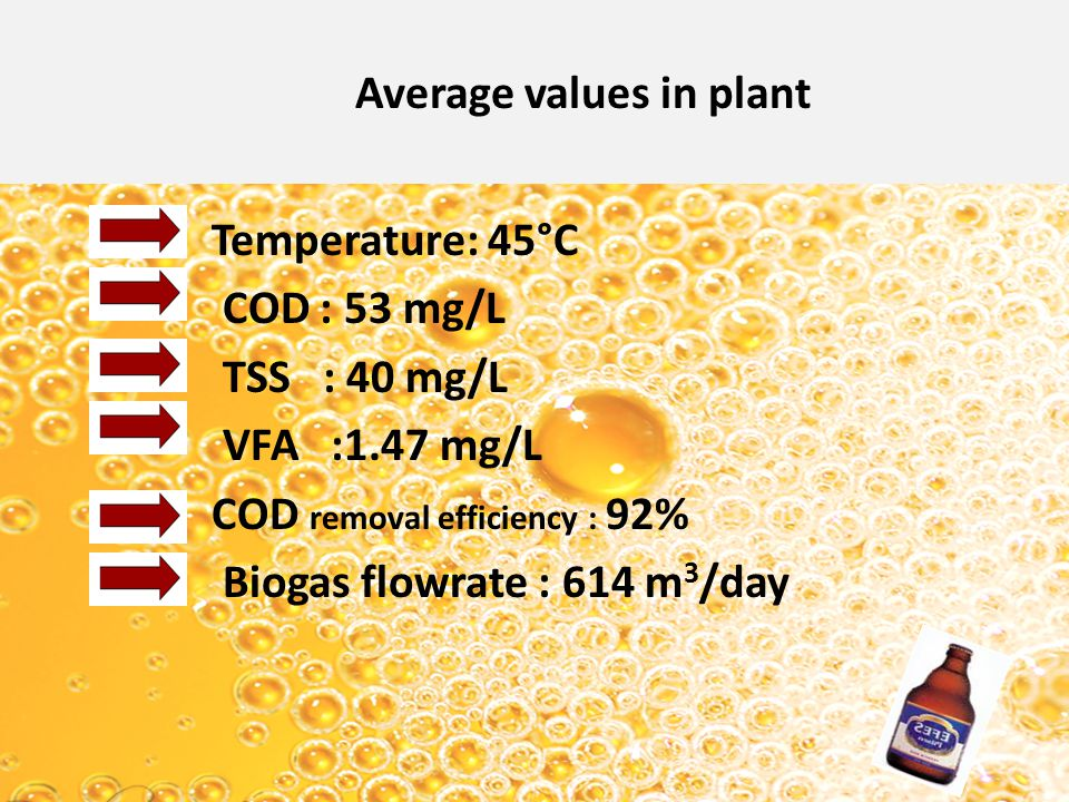 Average values in plant