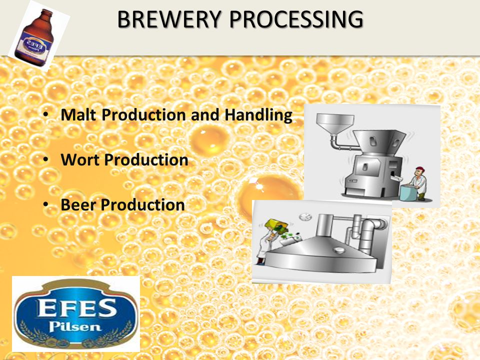 BREWERY PROCESSING Malt Production and Handling Wort Production