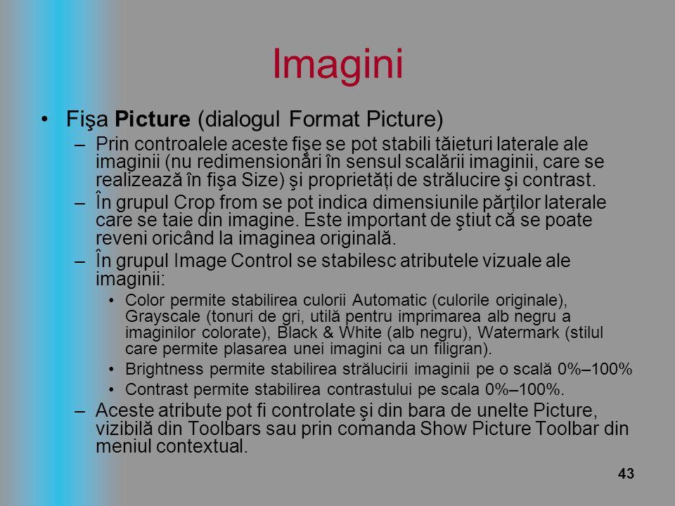 Imagini Fişa Picture (dialogul Format Picture)