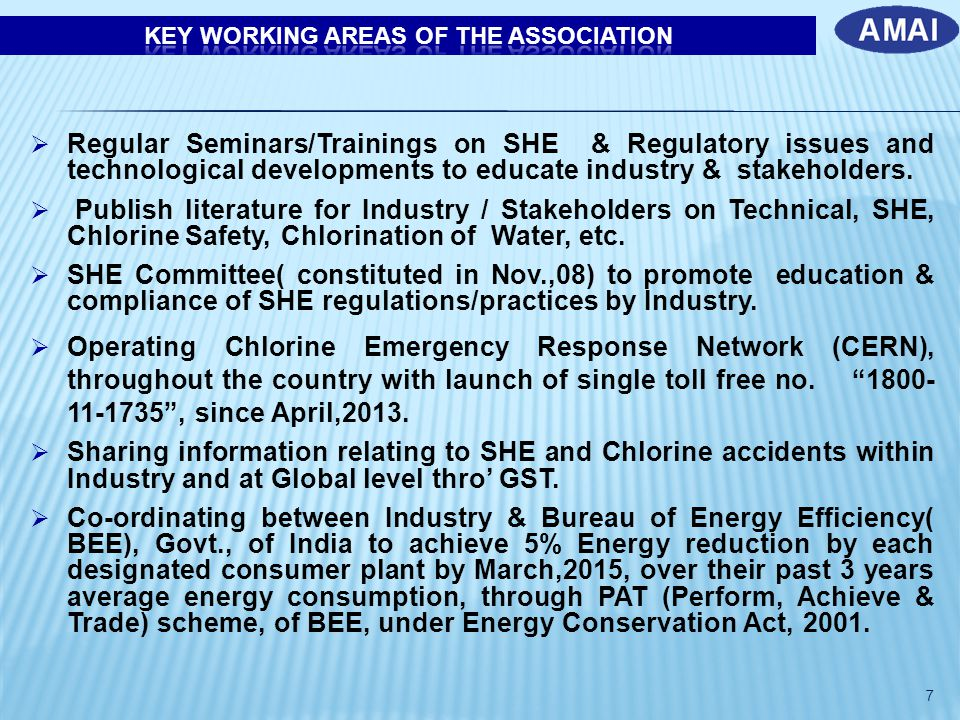 KEY WORKING AREAS OF THE ASSOCIATION