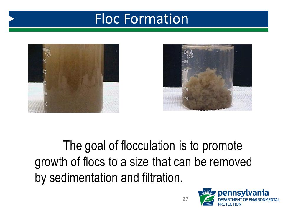 Floc Formation The goal of flocculation is to promote growth of flocs to a size that can be removed by sedimentation and filtration.