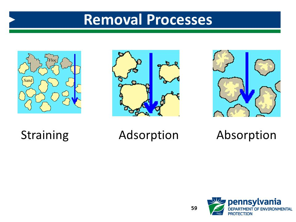 Removal Processes Straining Adsorption Absorption