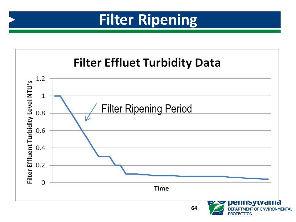 Filter Ripening Filter Ripening Period