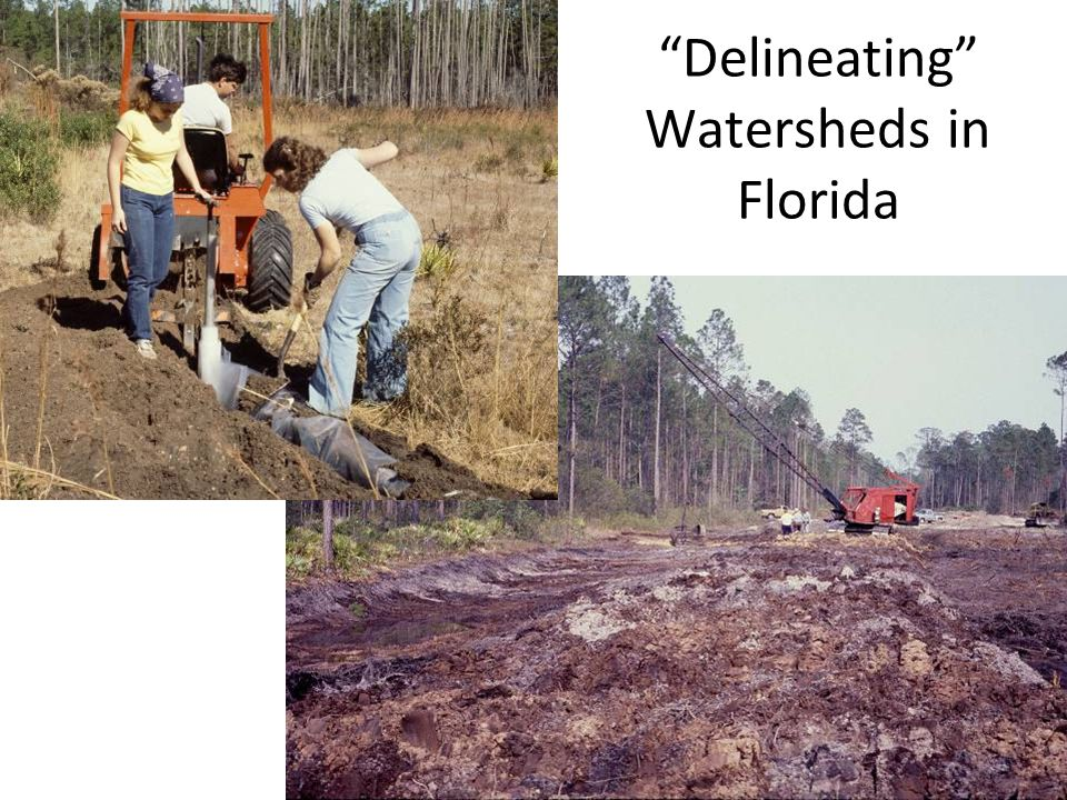 Delineating Watersheds in Florida